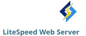 servidor web litespeed web server